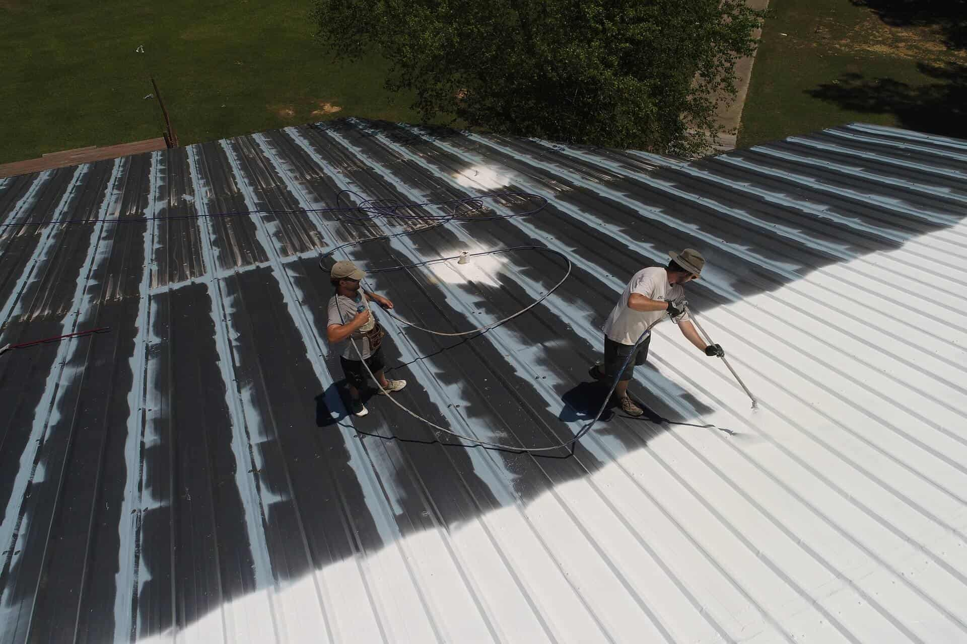Airless Roof Spray Paint