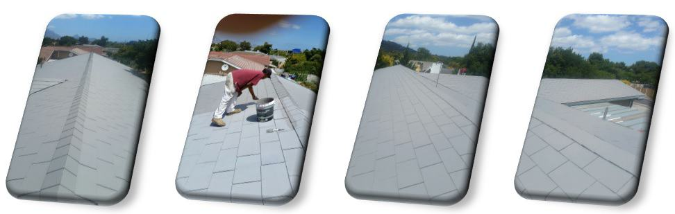 Roof Painting - after